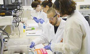 В Израиле нашли способ предотвратить метастазирование рака